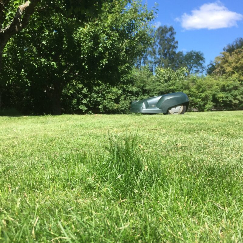 Husqvarna Automower klipptid för kort om toffsig gräsmatta